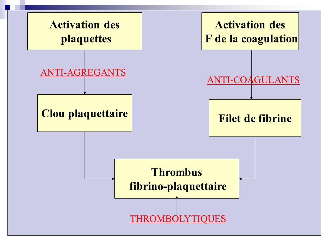 Activation des plaquettes Thrombus fibrino-plaquettaire Filet de fibrine Clou plaquettaire Activation des F de la coagulation ANTI-AGREGANTS ANTI-COAG