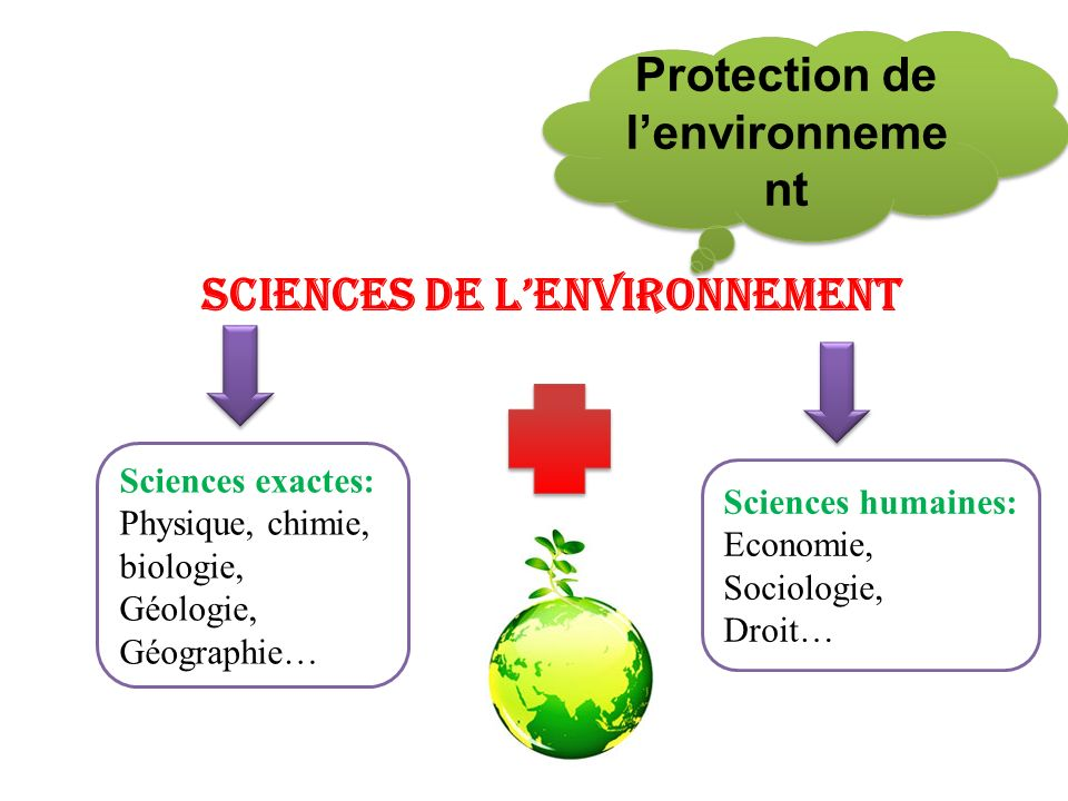 Sciences de lenvironnement Sciences exactes: Physique, chimie, biologie, Géologie, Géographie… Sciences humaines: Economie, Sociologie, Droit… Protect