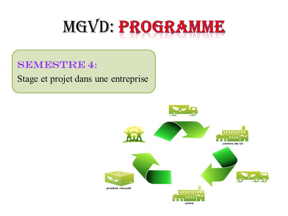 Semestre 4 : Stage et projet dans une entreprise