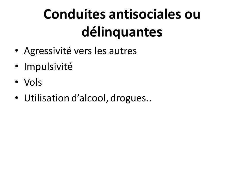 Conduites antisociales ou délinquantes Agressivité vers les autres Impulsivité Vols Utilisation dalcool, drogues..