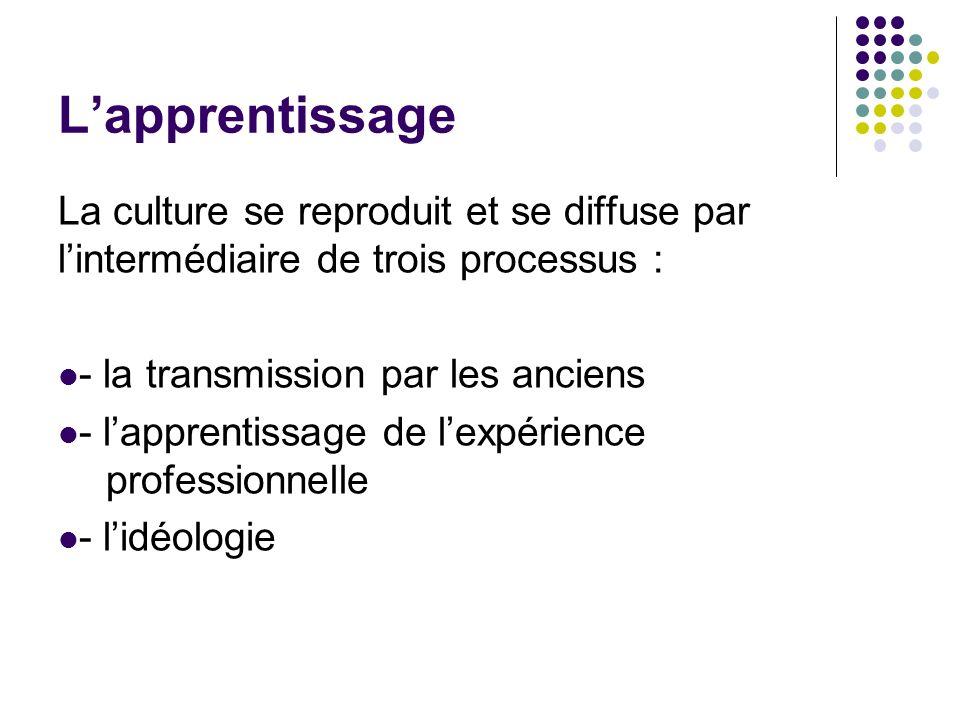 Lapprentissage La culture se reproduit et se diffuse par lintermédiaire de trois processus : - la transmission par les anciens - lapprentissage de lex