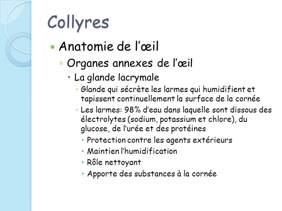 Collyres Anatomie de lœil Organes annexes de lœil La glande lacrymale Glande qui sécrète les larmes qui humidifient et tapissent continuellement la surface de la cornée Les larmes: 98% deau dans laquelle sont dissous des électrolytes (sodium, potassium et chlore), du glucose, de lurée et des protéines Protection contre les agents extérieurs Maintien lhumidification Rôle nettoyant Apporte des substances à la cornée