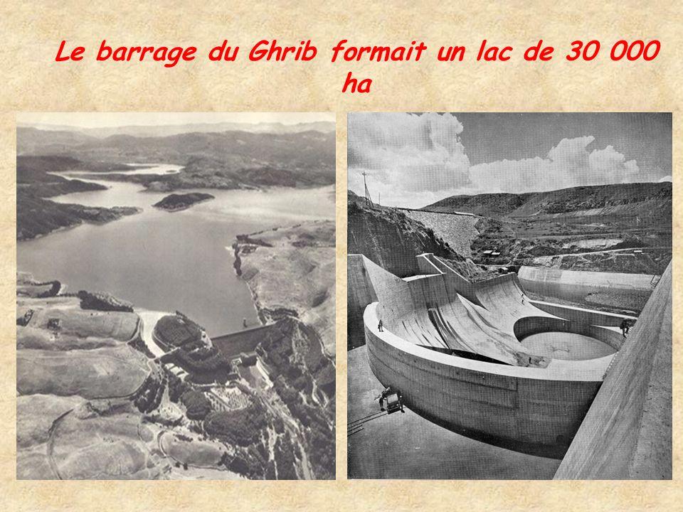 Le barrage de lOued-Fodda était équipé de 474 km de canalisations et 200 km de conduites