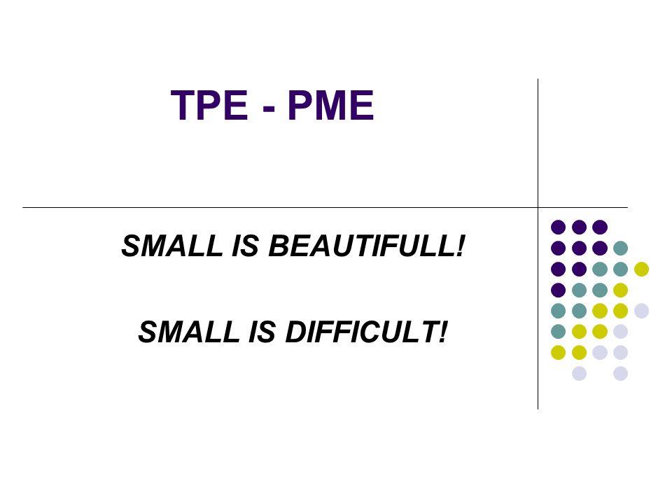 PLAN 1.Les enjeux économiques 2. La PME dans la Théorie des organisations 3.