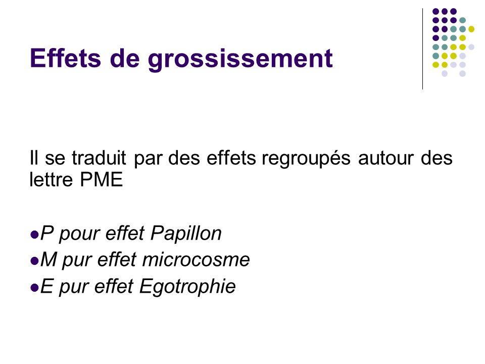 Effets de grossissement Il se traduit par des effets regroupés autour des lettre PME P pour effet Papillon M pur effet microcosme E pur effet Egotroph