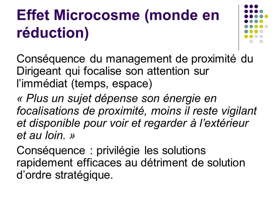 Effet Microcosme (monde en réduction) Conséquence du management de proximité du Dirigeant qui focalise son attention sur limmédiat (temps, espace) « P
