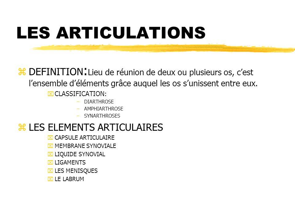 LES ARTICULATIONS zDEFINITION : Lieu de réunion de deux ou plusieurs os, cest lensemble déléments grâce auquel les os sunissent entre eux. xCLASSIFICA