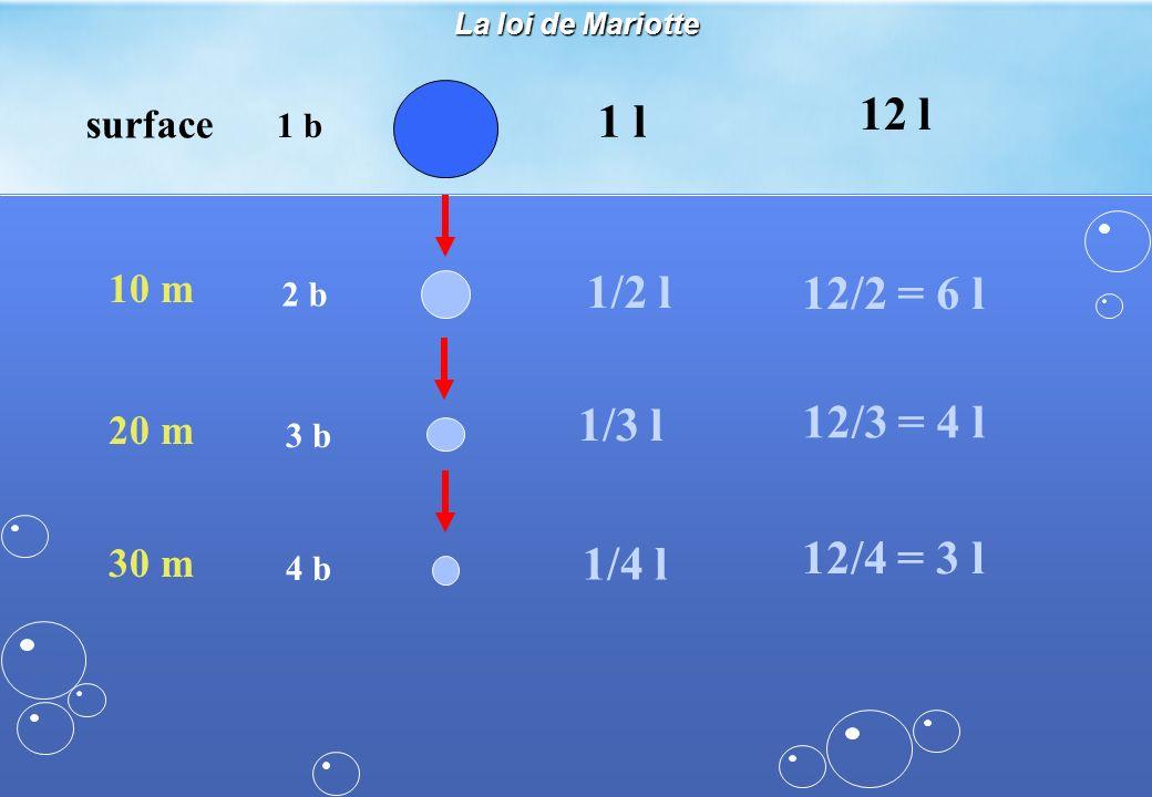 surface 1 b 1 l 10 m 2 b 1/2 l 20 m 3 b 1/3 l 30 m 4 b 1/4 l 12 l 12/2 = 6 l 12/3 = 4 l 12/4 = 3 l