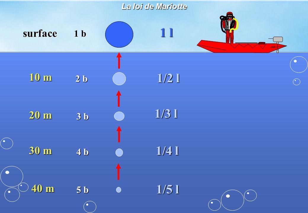 La loi de Mariotte surface 1 b 1 l 10 m 2 b 1/2 l 20 m 3 b 1/3 l 30 m 4 b 1/4 l 40 m 5 b 1/5 l