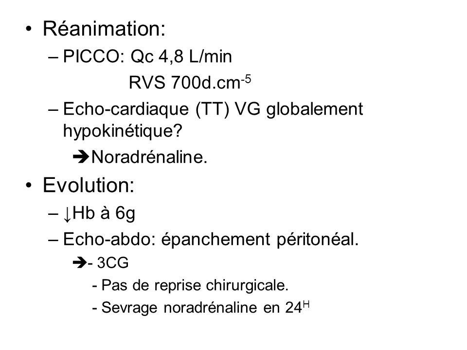 Réanimation: –PICCO: Qc 4,8 L/min RVS 700d.cm -5 –Echo-cardiaque (TT) VG globalement hypokinétique? Noradrénaline. Evolution: –Hb à 6g –Echo-abdo: épa