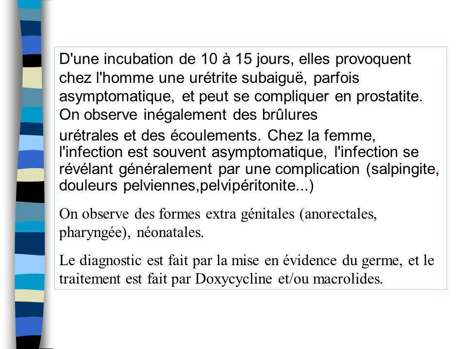 D'une incubation de 10 à 15 jours, elles provoquent chez l'homme une urétrite subaiguë, parfois asymptomatique, et peut se compliquer en prostatite. O
