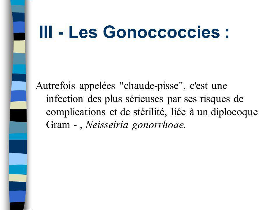 III - Les Gonoccoccies : Autrefois appelées
