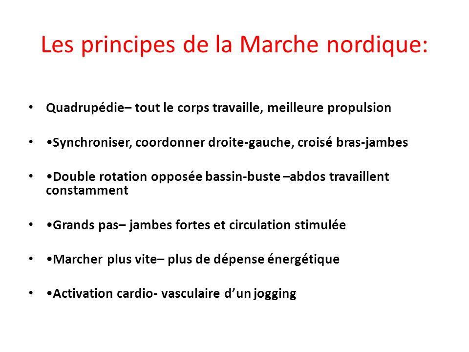 Les principes de la Marche nordique: Quadrupédie– tout le corps travaille, meilleure propulsion Synchroniser, coordonner droite-gauche, croisé bras-ja