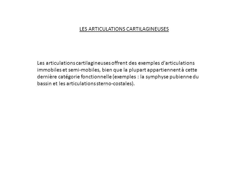 LES ARTICULATIONS CARTILAGINEUSES Les articulations cartilagineuses offrent des exemples d'articulations immobiles et semi-mobiles, bien que la plupar