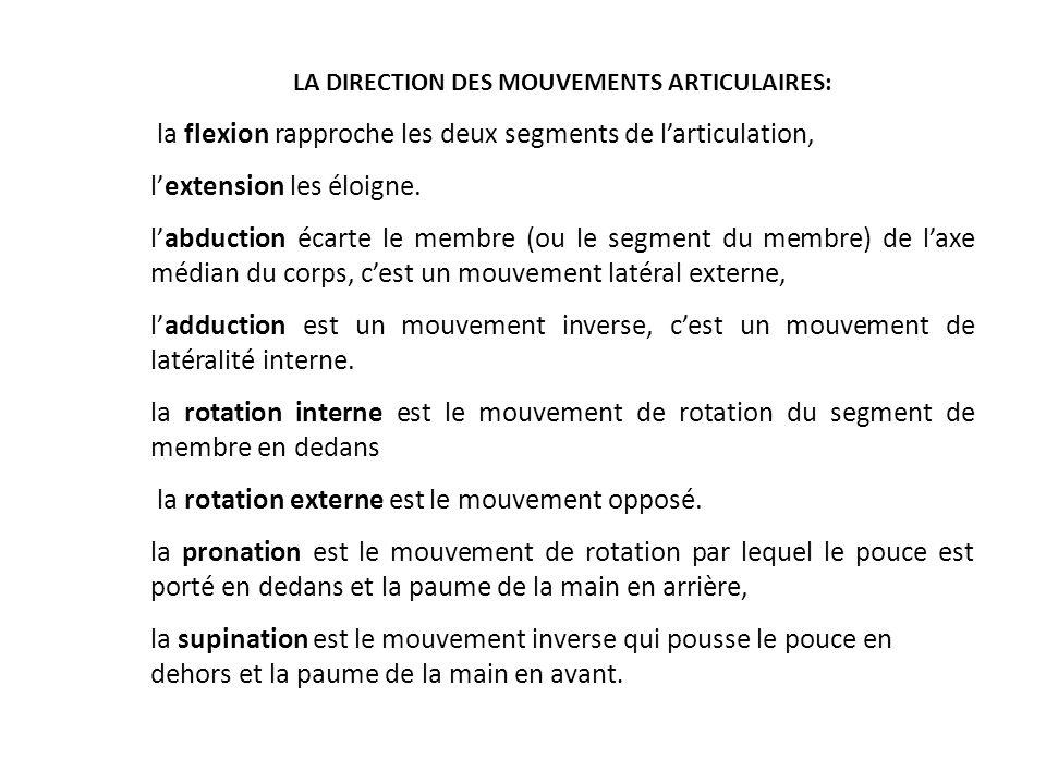 LA DIRECTION DES MOUVEMENTS ARTICULAIRES: la flexion rapproche les deux segments de larticulation, lextension les éloigne. labduction écarte le membre