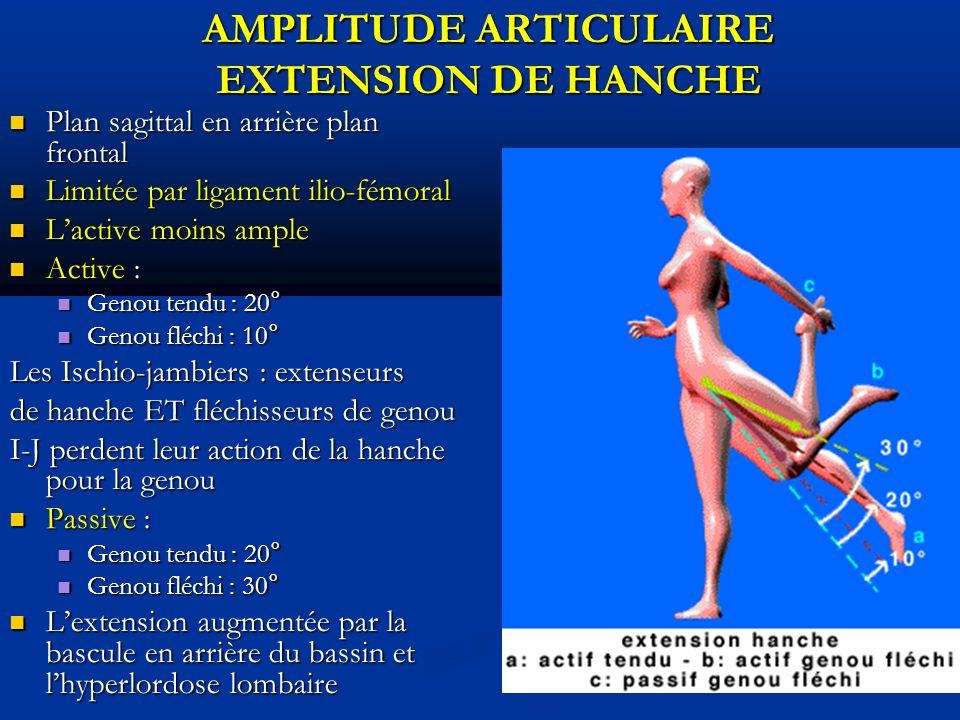 AMPLITUDE ARTICULAIRE EXTENSION DE HANCHE Plan sagittal en arrière plan frontal Plan sagittal en arrière plan frontal Limitée par ligament ilio-fémoral Limitée par ligament ilio-fémoral Lactive moins ample Lactive moins ample Active : Active : Genou tendu : 20° Genou tendu : 20° Genou fléchi : 10° Genou fléchi : 10° Les Ischio-jambiers : extenseurs de hanche ET fléchisseurs de genou I-J perdent leur action de la hanche pour la genou Passive : Passive : Genou tendu : 20° Genou tendu : 20° Genou fléchi : 30° Genou fléchi : 30° Lextension augmentée par la bascule en arrière du bassin et lhyperlordose lombaire Lextension augmentée par la bascule en arrière du bassin et lhyperlordose lombaire
