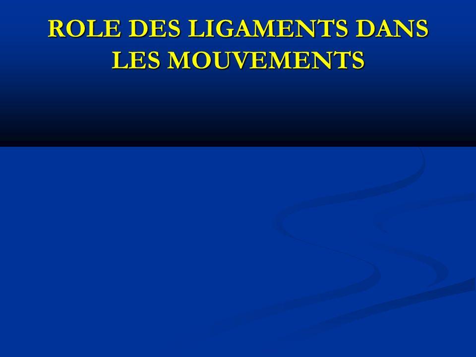 ROLE DES LIGAMENTS DANS LES MOUVEMENTS