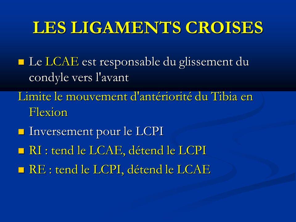 LES LIGAMENTS CROISES Le LCAE est responsable du glissement du condyle vers l avant Le LCAE est responsable du glissement du condyle vers l avant Limite le mouvement d antériorité du Tibia en Flexion Inversement pour le LCPI Inversement pour le LCPI RI : tend le LCAE, détend le LCPI RI : tend le LCAE, détend le LCPI RE : tend le LCPI, détend le LCAE RE : tend le LCPI, détend le LCAE