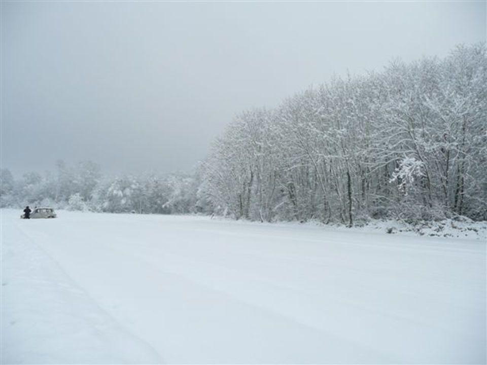 19 décembre: 15cm retombés en à peine 6h ce qui augmente la couche de neige à son maximum: 45cm !!.