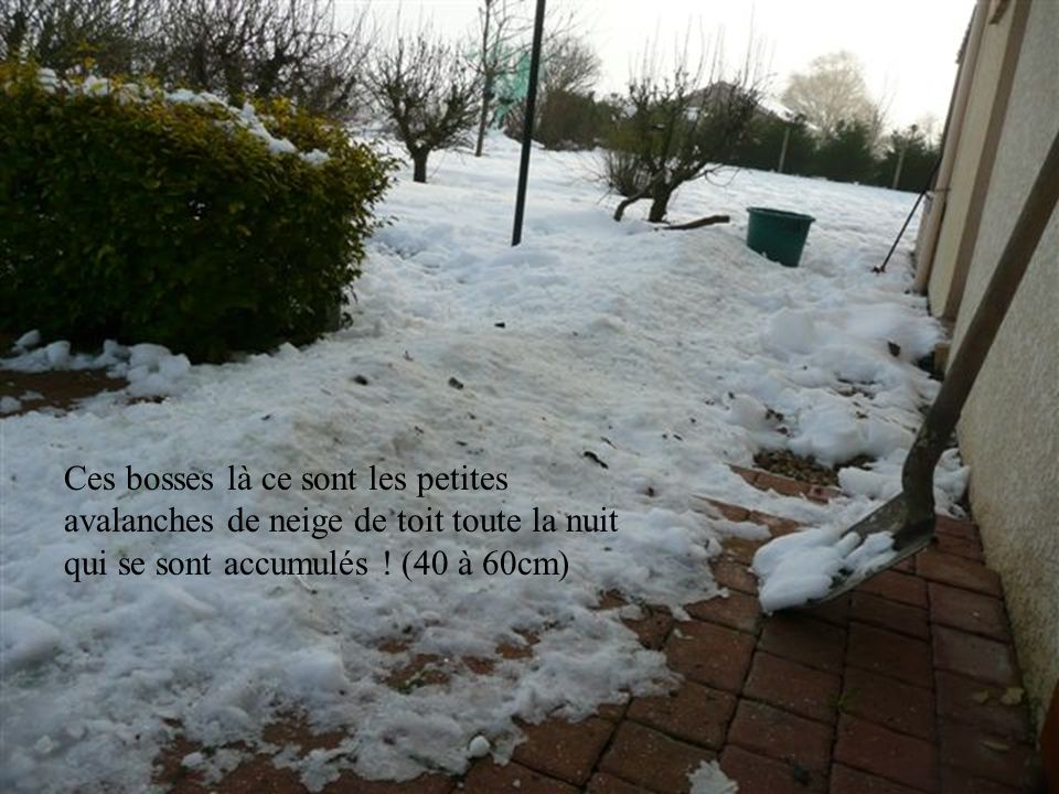 Matin du 21 décembre: brouillard givrant et –1°C en minimale ; il reste un peu moins de 30cm de neige.