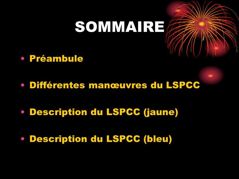 1.PREAMBULE Définition: le lot de sauvetage et de protection contre les chutes appeler aussi LSPCC est destiné au sauvetage des personnes et a la protection des chutes de hauteur.