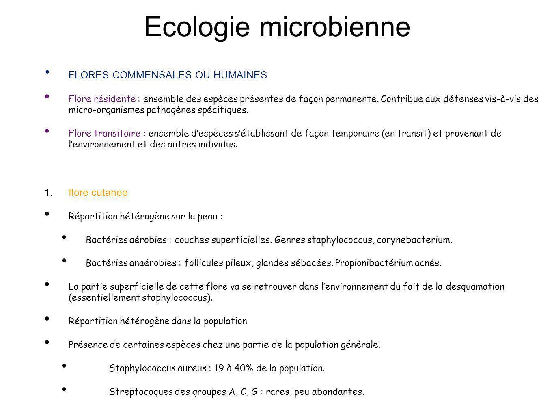Ecologie microbienne FLORES COMMENSALES OU HUMAINES Flore résidente : ensemble des espèces présentes de façon permanente. Contribue aux défenses vis-à