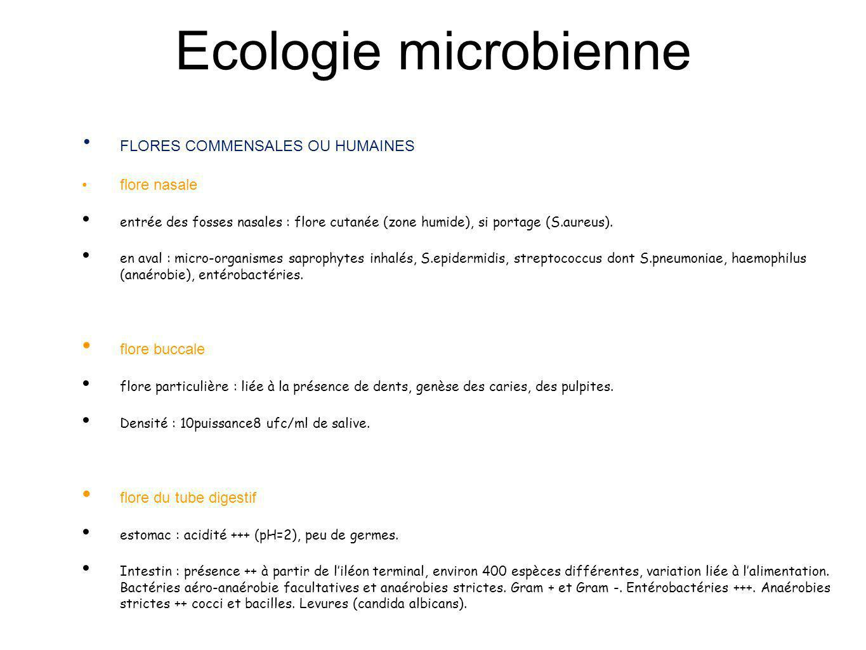 Ecologie microbienne FLORES COMMENSALES OU HUMAINES flore nasale entrée des fosses nasales : flore cutanée (zone humide), si portage (S.aureus). en av