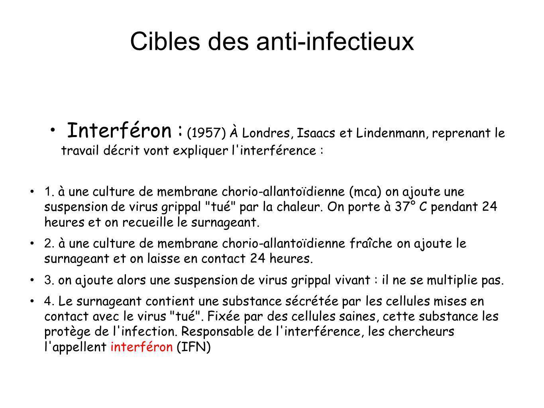 Cibles des anti-infectieux Interféron IFN : Glycoprotéines fabriquées par des cellules infectées par un virus Spécifique dune espèce animale mais pas dune espèce virale 3 types : IFN alpha, IFN béta, IFN gamma Etat réfractaire à la réplication virale Rôle important dans la guérison spontanée de certaines infections virales