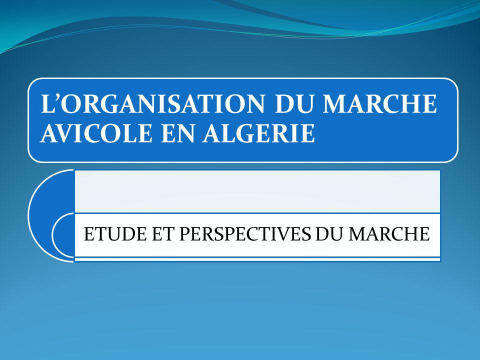 LORGANISATION DU MARCHE AVICOLE EN ALGERIE ETUDE ET PERSPECTIVES DU MARCHE