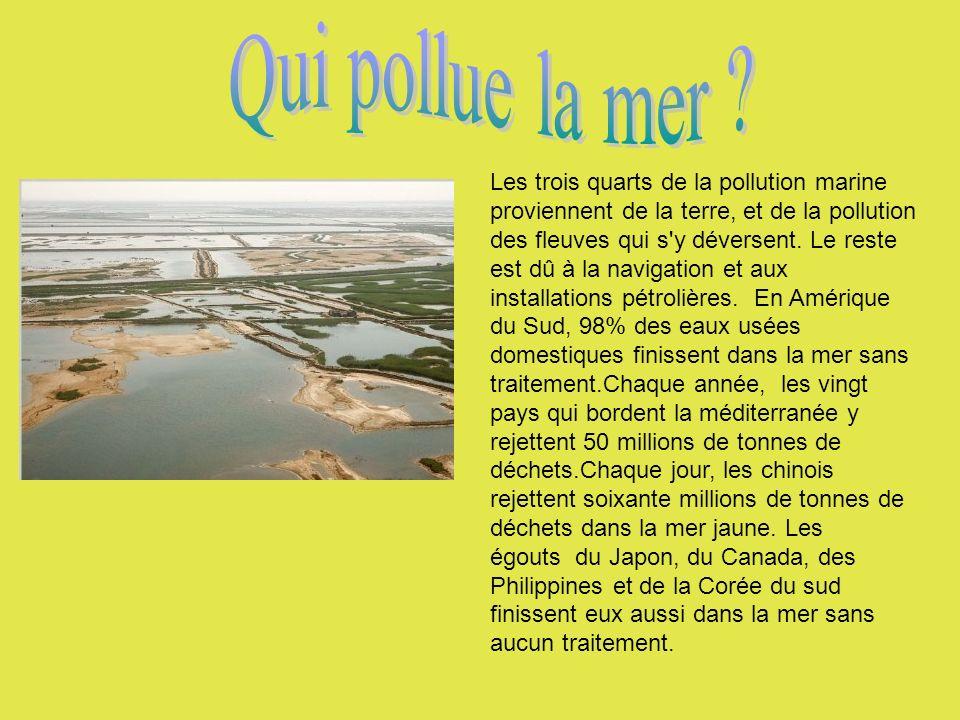 Les trois quarts de la pollution marine proviennent de la terre, et de la pollution des fleuves qui s'y déversent. Le reste est dû à la navigation et