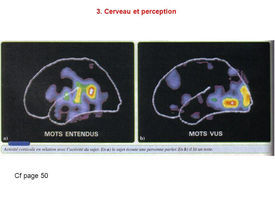 Cf page 50 3. Cerveau et perception