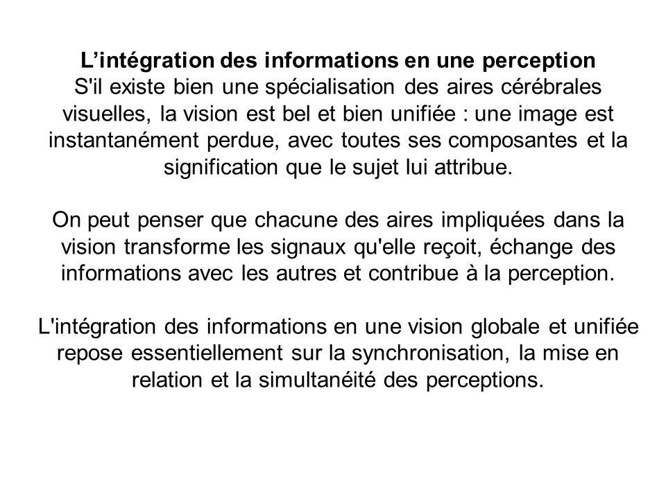 Lintégration des informations en une perception S'il existe bien une spécialisation des aires cérébrales visuelles, la vision est bel et bien unifiée