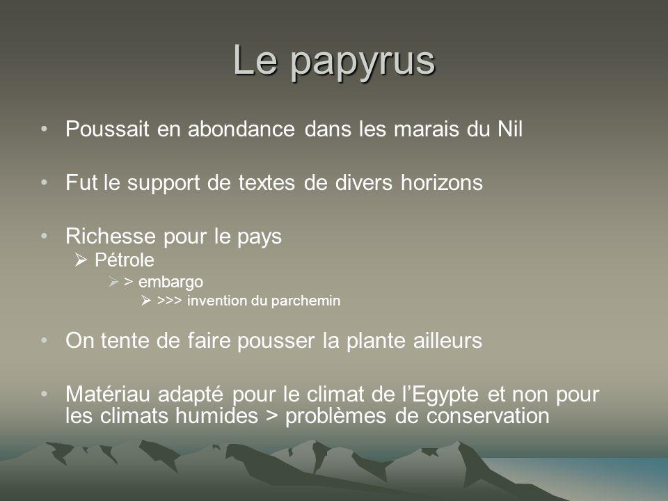 Le papyrus Poussait en abondance dans les marais du Nil Fut le support de textes de divers horizons Richesse pour le pays Pétrole > embargo >>> invent