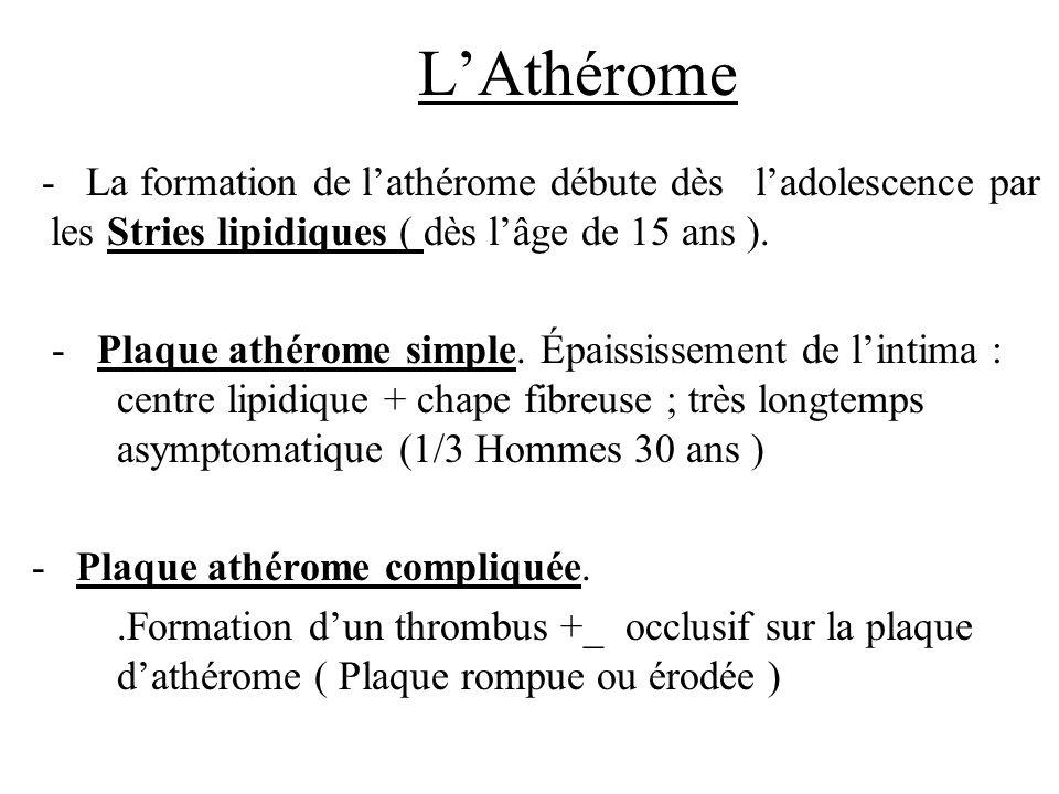LAthérome - La formation de lathérome débute dès ladolescence par les Stries lipidiques ( dès lâge de 15 ans ). - Plaque athérome simple. Épaississeme