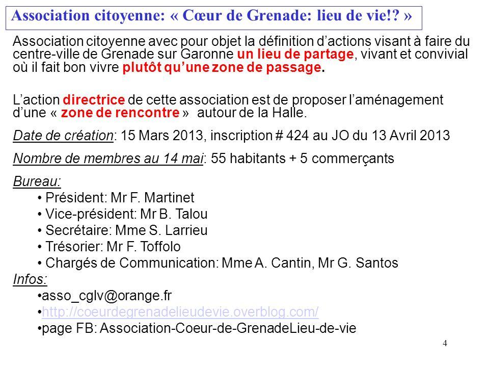 Association citoyenne: « Cœur de Grenade: lieu de vie!? » Association citoyenne avec pour objet la définition dactions visant à faire du centre-ville