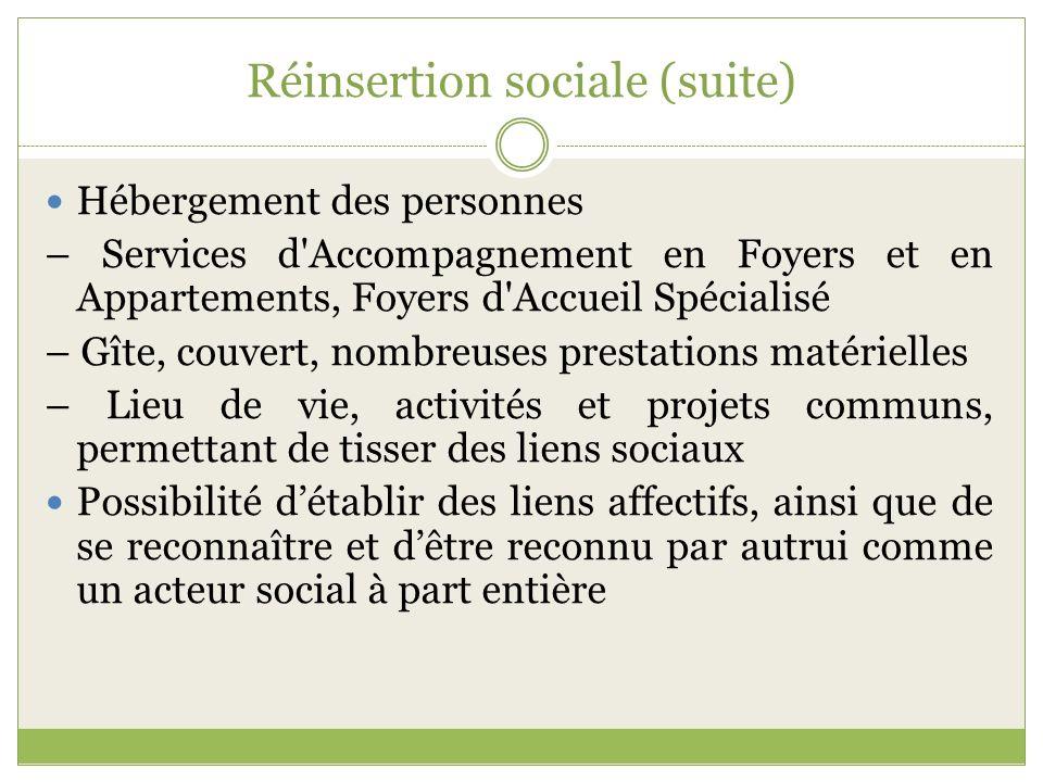 Réinsertion sociale (suite) Hébergement des personnes – Services d'Accompagnement en Foyers et en Appartements, Foyers d'Accueil Spécialisé – Gîte, co