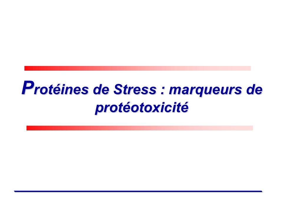 P rotéines de Stress : marqueurs de protéotoxicité