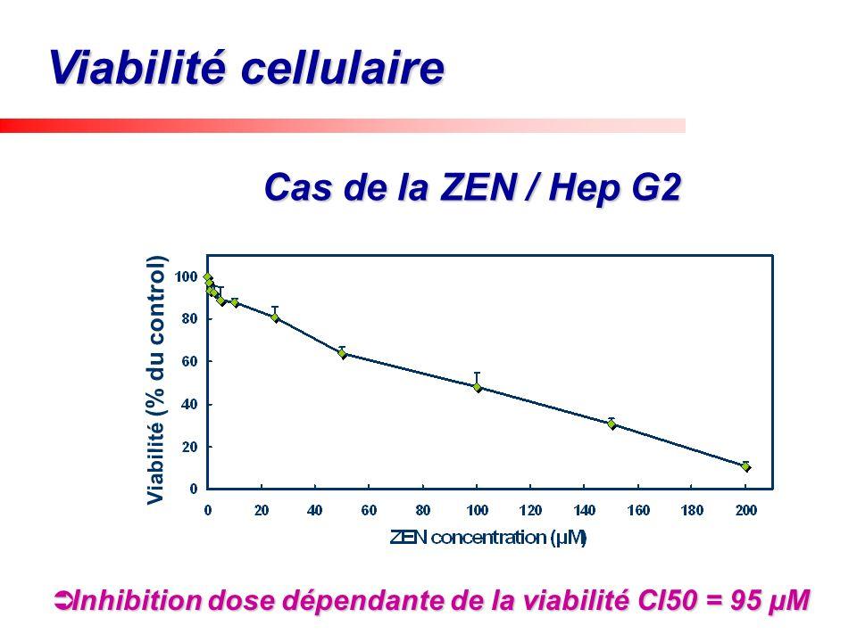 Viabilité (% du control) Inhibition dose dépendante de la viabilité CI50 = 95 µM Inhibition dose dépendante de la viabilité CI50 = 95 µM Cas de la ZEN