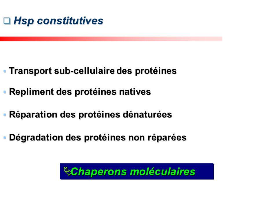 Viabilité (% du control) Inhibition dose dépendante de la viabilité CI50 = 95 µM Inhibition dose dépendante de la viabilité CI50 = 95 µM Cas de la ZEN / Hep G2 Viabilité cellulaire Viabilité cellulaire