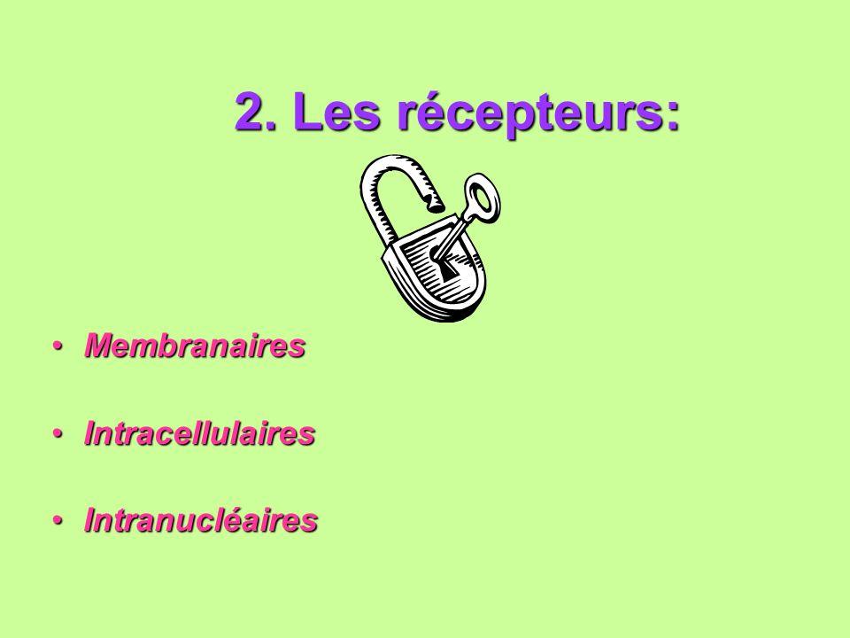 2. Les récepteurs: 2. Les récepteurs: MembranairesMembranaires IntracellulairesIntracellulaires IntranucléairesIntranucléaires