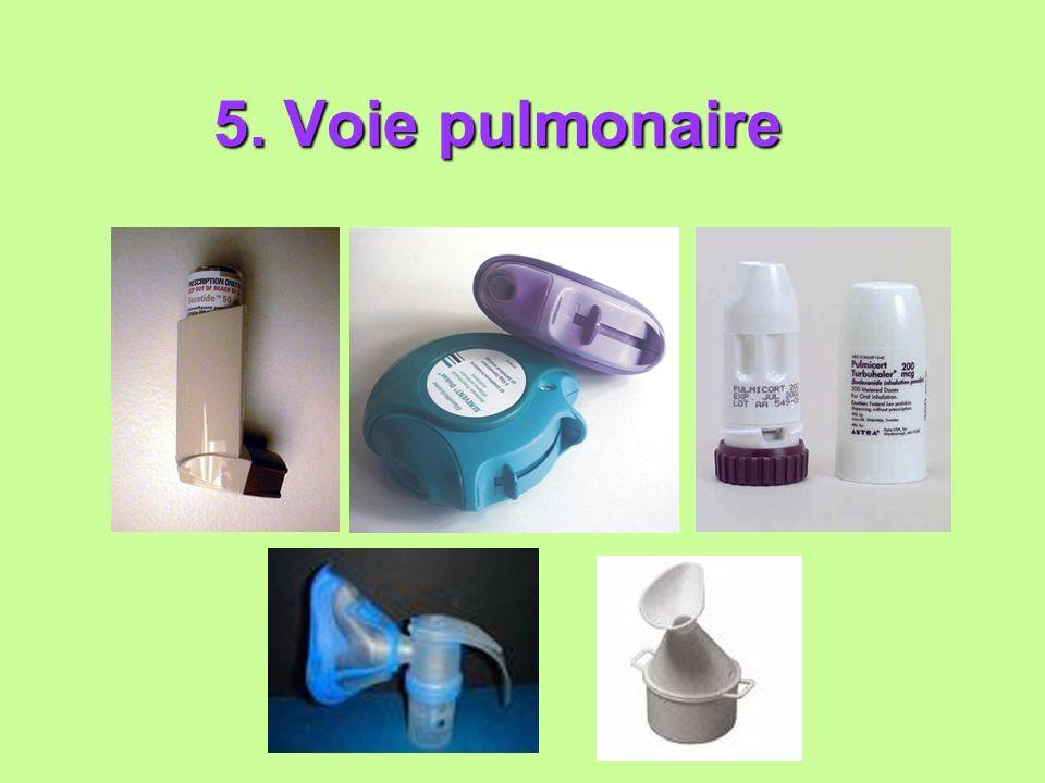 5. Voie pulmonaire 5. Voie pulmonaire