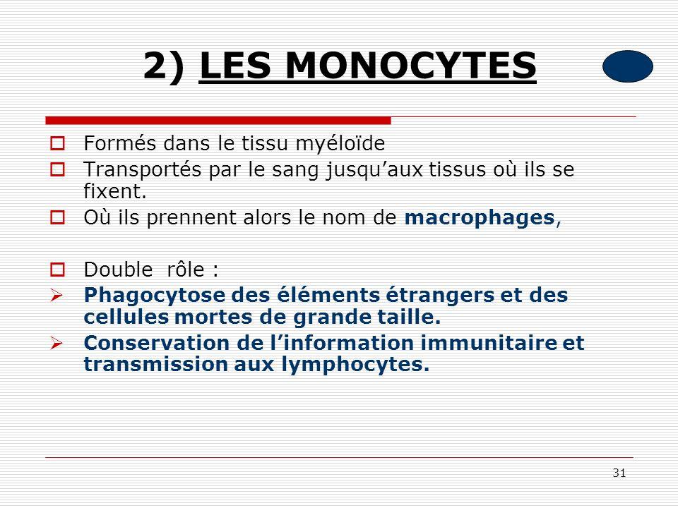 31 2) LES MONOCYTES Formés dans le tissu myéloïde Transportés par le sang jusquaux tissus où ils se fixent. Où ils prennent alors le nom de macrophage