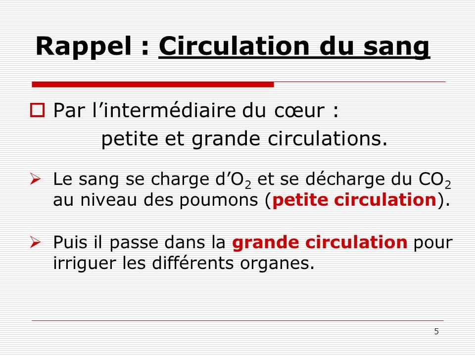 6 I 1 Schéma de la petite et de la grande circulation COEUR POUMONS ORGANES PETITE CIRCULATION GRANDE CIRCULATION Sang riche en O 2 Sang riche en CO 2 CO 2 O2O2 O2O2