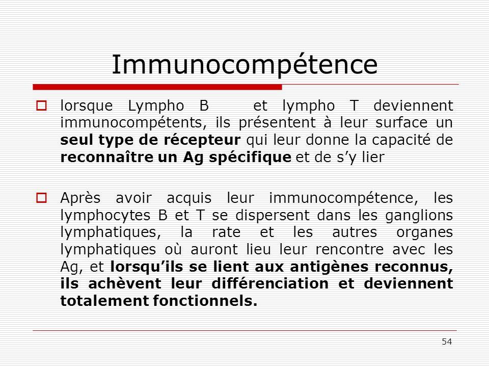54 Immunocompétence lorsque Lympho B et lympho T deviennent immunocompétents, ils présentent à leur surface un seul type de récepteur qui leur donne l