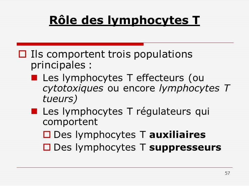 57 Rôle des lymphocytes T Ils comportent trois populations principales : Les lymphocytes T effecteurs (ou cytotoxiques ou encore lymphocytes T tueurs)