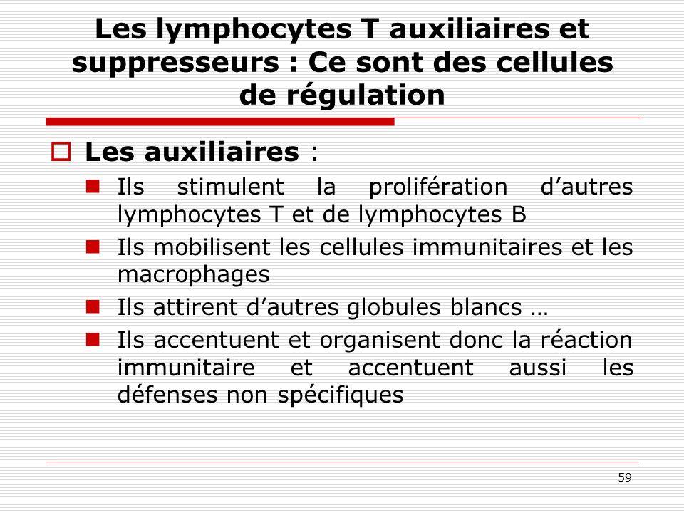 59 Les lymphocytes T auxiliaires et suppresseurs : Ce sont des cellules de régulation Les auxiliaires : Ils stimulent la prolifération dautres lymphoc
