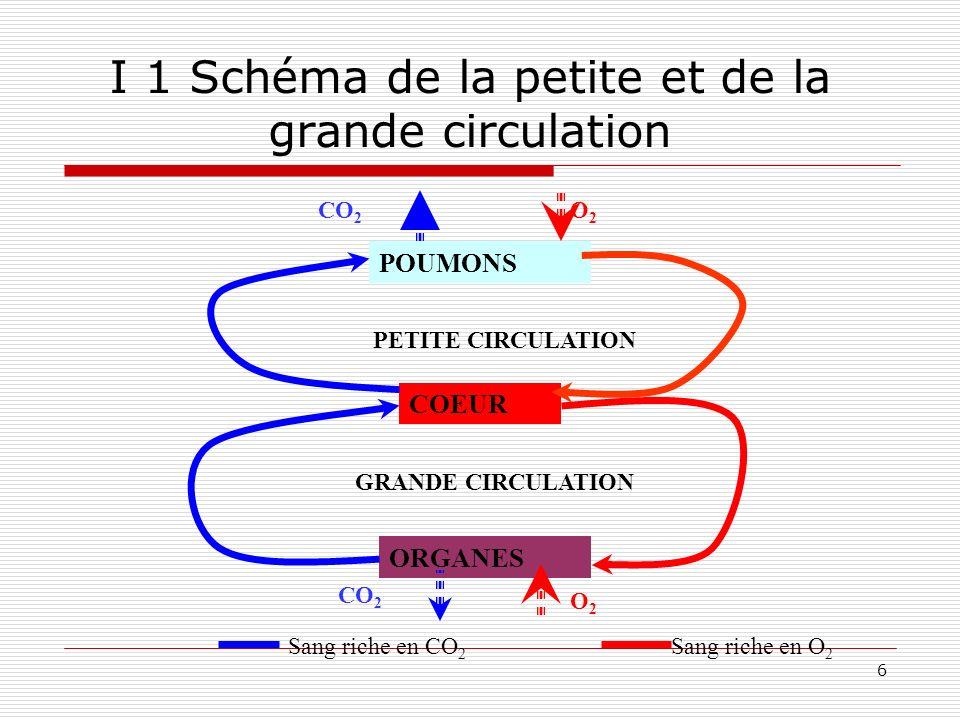 6 I 1 Schéma de la petite et de la grande circulation COEUR POUMONS ORGANES PETITE CIRCULATION GRANDE CIRCULATION Sang riche en O 2 Sang riche en CO 2