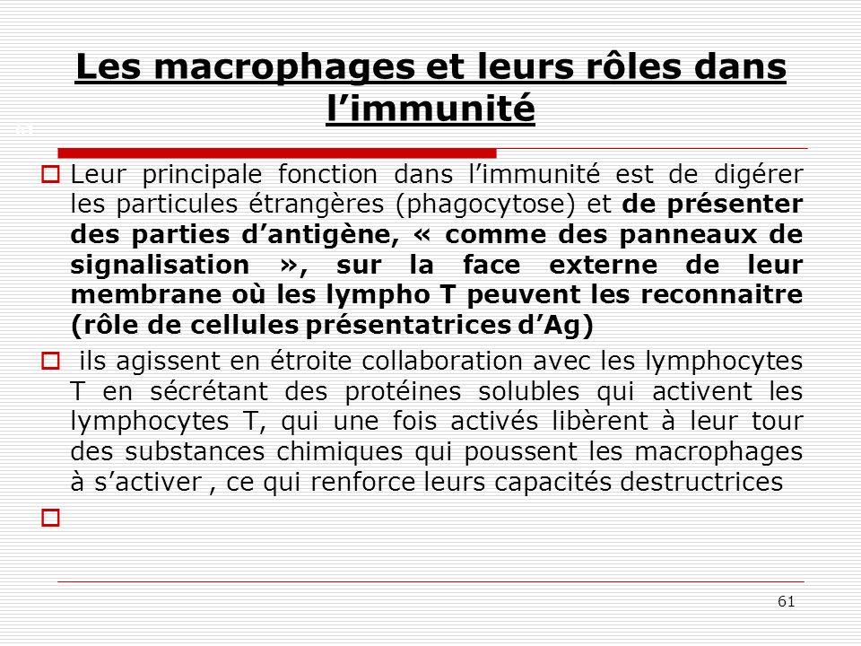 61 Les macrophages et leurs rôles dans limmunité Leur principale fonction dans limmunité est de digérer les particules étrangères (phagocytose) et de