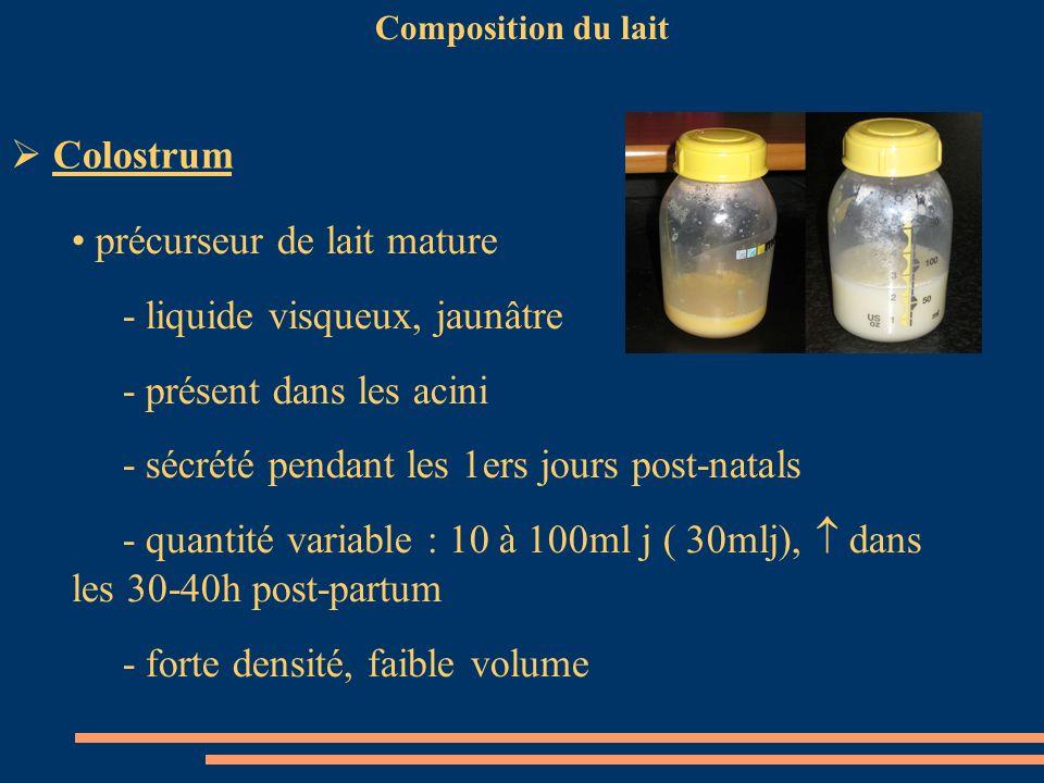 Composition du lait Colostrum précurseur de lait mature - liquide visqueux, jaunâtre - présent dans les acini - sécrété pendant les 1ers jours post-na