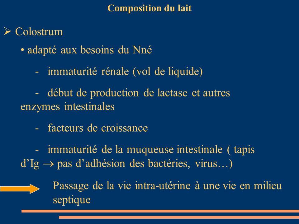 Composition du lait Colostrum adapté aux besoins du Nné - immaturité rénale (vol de liquide) - début de production de lactase et autres enzymes intest